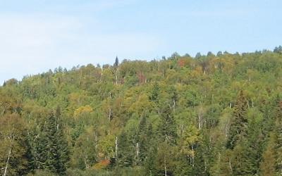 Terre à vendre à St-Ignace du lac Taureau.